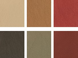 Various Upholstery Colors